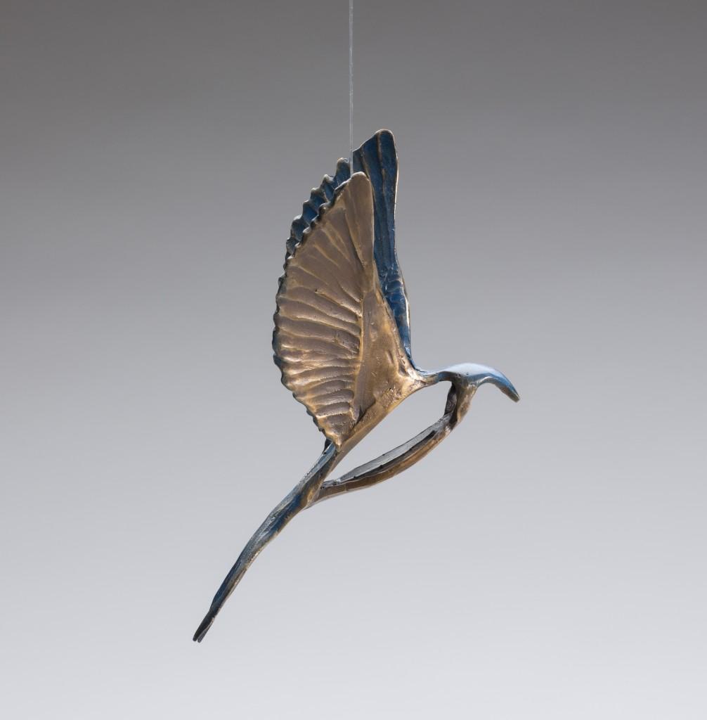 Swallow Eagle 05